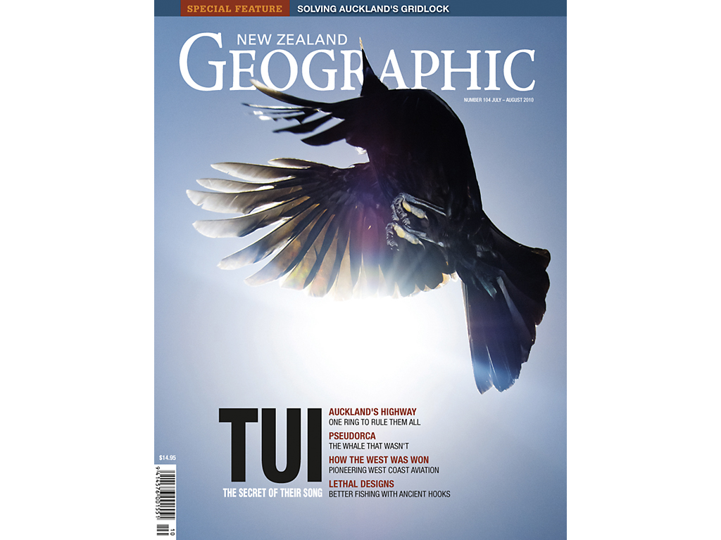 NZ Geographic Tui Story